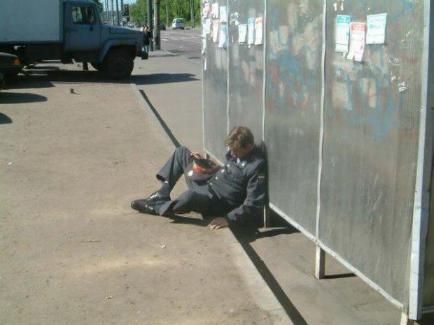 Подборка приколов - 65 фотографий