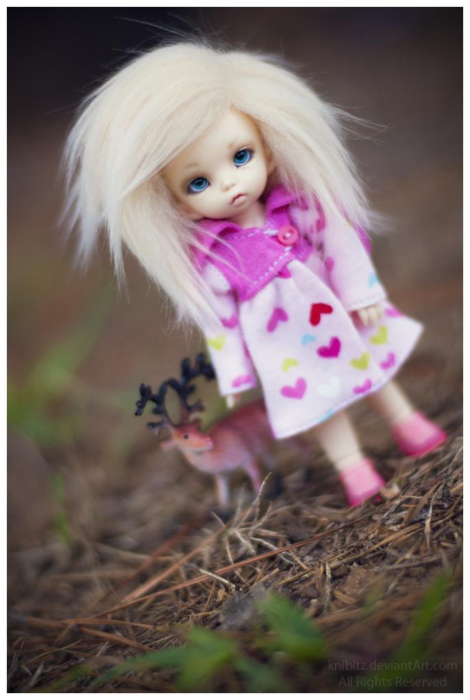 BJD куклы от Knibitz