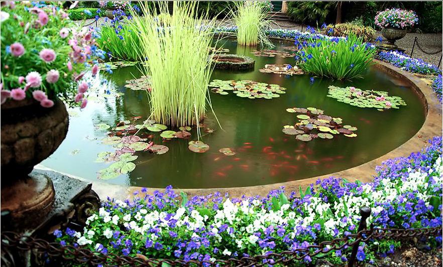 Декор пруд в саду оригинальные идеи