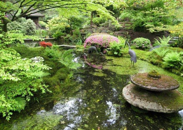 Ландшафтный дизайн в стиле Японского сада - 63 Фото