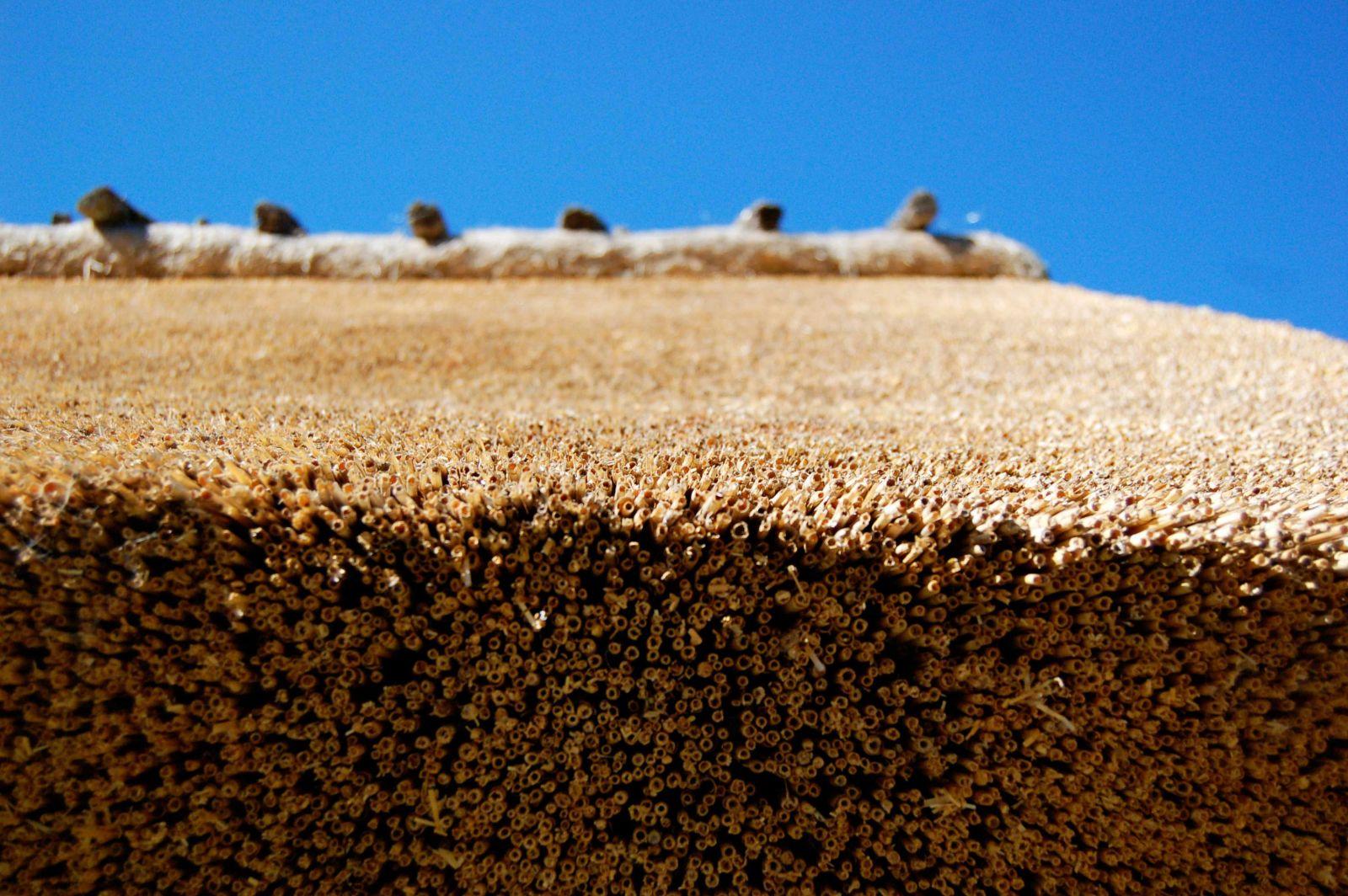 технология укладки из септика из бетонных колец