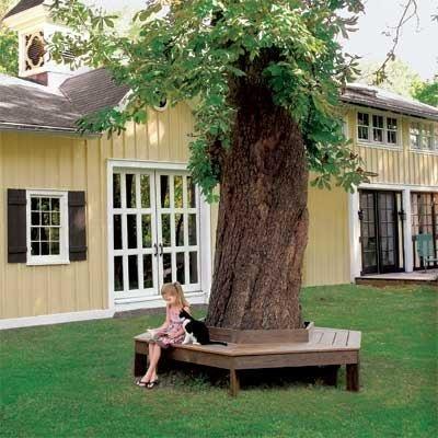 Садовая скамейка или лавочка в саду
