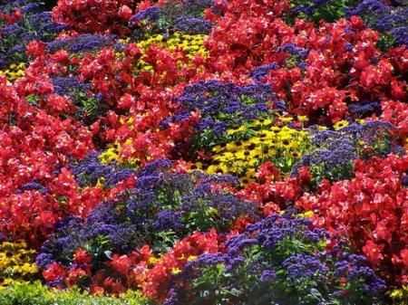 Нерегулярная цветочная клумба в саду - Идеи для сада - 8 фото