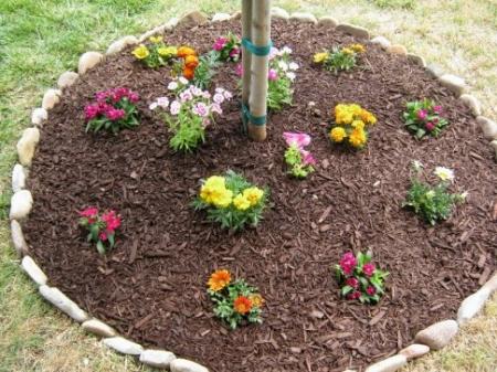 Цветочная клумба вокруг дерева - Идеи для сада - 26 фото