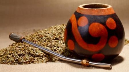 Чай матэ, целебные свойства
