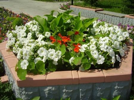 Приподнятая цветочная клумба в саду - Идеи для сада - 26 фото