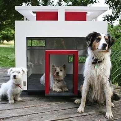 Подборка домиков для собак - 53 фото