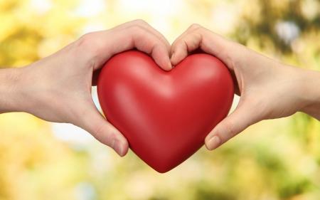 7 универсальных принципов гармоничных отношений